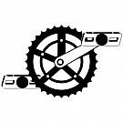 11_Cykelsport