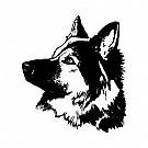 04_Hundsport