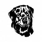 05_Hundsport