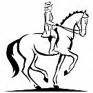 04_Hästsport